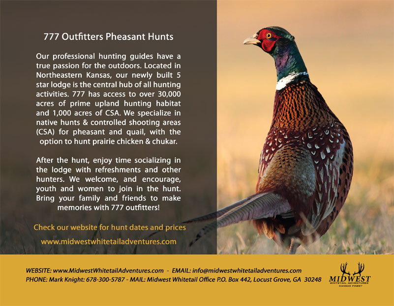 Midwest Whitetail Adventures pheasant hunt brochure